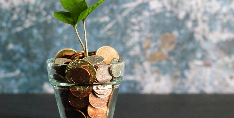 coins-plant-money